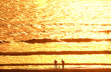 Two fisherman silhouetted against the ocean at sunrise with golden colors, Daytona Beach, Florida, United States of America, North America