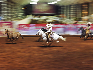 Mexican charro participating in charreadas, a type of rodeo, Guadalajara, Jalisco, Mexico, North America