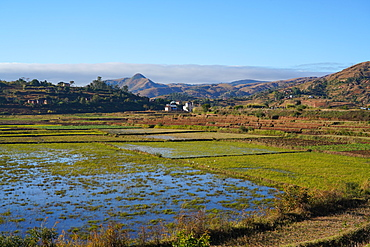 Landscape on the RN34 route close to Antsirabe, Central Madagascar, Africa