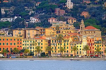 Santa Margherita Ligure seen from the harbour, Genova (Genoa), Liguria, Italy, Europe