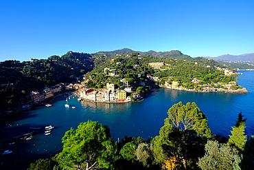 The bay of Portofino seen from Castello Brown, Genova (Genoa), Liguria, Italy, Europe
