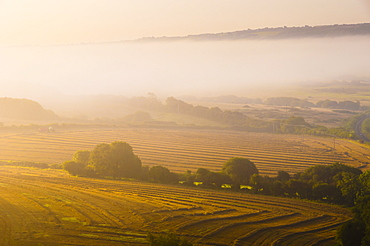 Countryside near Corfe Castle, Dorset, England, United Kingdom, Europe