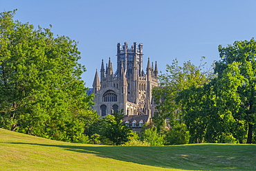 Ely Cathedral, Octagon Lantern Tower viewed from Cherry Hill Park, Ely, Cambridgeshire, England, United Kingdom, Europe - 828-1447
