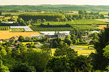 View of fields, orchards and polytunnels in summer seen from this important hilltop town, Duras, Lot-et-Garonne, France, Europe