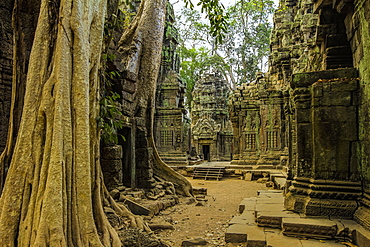 Galleries and gopura entrance at 12th century temple Ta Prohm, a Tomb Raider film location, Angkor, UNESCO World Heritage Site, Siem Reap, Cambodia, Indochina, Southeast Asia, Asia