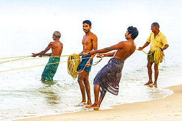 Fishermen pulling large set net to shore at busy, popular Marari Beach, Mararikulam, Alappuzha (Alleppey), Kerala, India, Asia