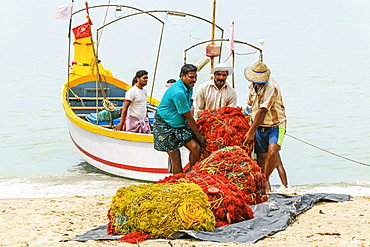 Fishermen carrying heavy nets on to shore at popular Marari Beach, Mararikulam, Alappuzha (Alleppey), Kerala, India, Asia