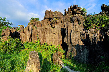 Limestone rock eroded and dissolved by water in karst region, Rammang-Rammang, Maros, South Sulawesi, Indonesia, Southeast Asia, Asia