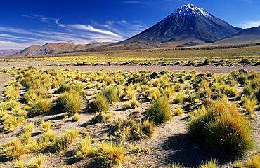 Licancabur volcanoe (5916 m) near San Pedro de Atacama, Chile