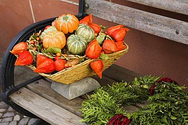 Autumn garden decoration pumkins
