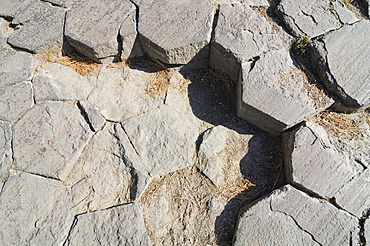 Hexagonal pattern on the top surface of basalt columns at Mammoth Lake, Devil\'s Postpile National Monument, California, USA