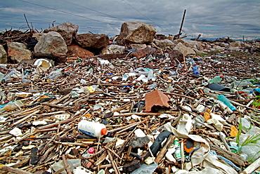 Rubbish on seashore at the beach of Pisa Tuscany Italy