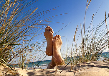 Men's feet in a sand dune by the sea