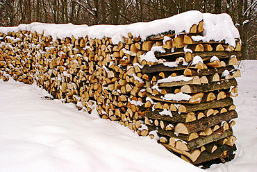 Wood-pile in snow