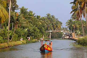 Colorful boat on a canal, Backwaters near Alleppey, Alappuzha, Kerala, India, South Asia, Asia