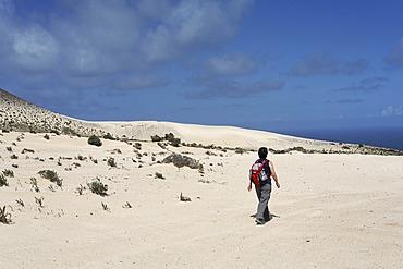 Hiker in El Jable , Jandia , Fuerteventura , Canary Islands