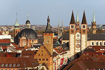 Neumuenster church, old townhall, cathedral, Wuerzburg, Franconia, Bavaria, Germany