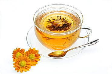 Jasmine blossom in a teacup