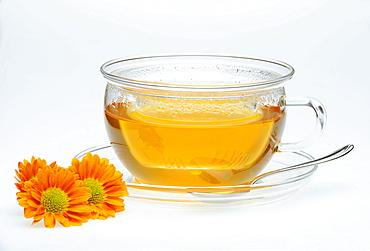 Tea with chrysanthemum decoration, jasmine tea