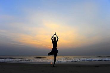Woman doing yoga on a beach at dusk, Kerala, India
