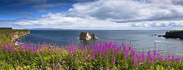 Bay in Scotland, UK, Europe