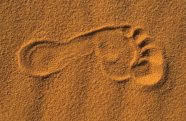 Foot print in the sand