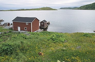 Fishing cabin at Red Bay the old basque whaling station, Red Bay National Historic Site of Canada, Labrador