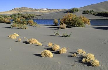 Sand dunes and lake at Bruneau Dunes State Park, Idaho, USA