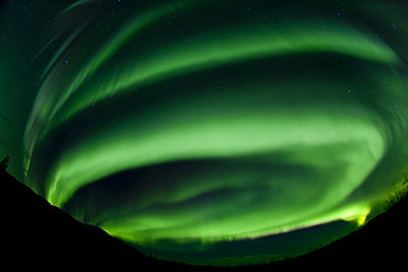 Spiral, swirling green northern polar lights, Aurora borealis, near Whitehorse, Yukon Territory, Canada