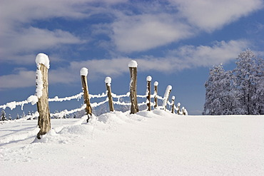 Winter landscape scenery, fence, Bavaria, Germany, Europe