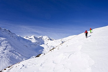 Ski touring in the ascent to the Kalfanwand in Val Martello, Stelvio National Park, Province of South Tyrol, Italy, Europe