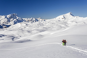 Ski mountaineers during the ascent of Mt Seekofel in the Fanes-Sennes-Prags Nature Park of the Dolomites, Mt Neuner at the back, Mt Seneser Karspitze on the right, St. Vigil, Puster Valley, South Tyrol, Italy, Europe