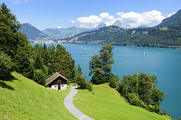 Ruetli, the founding site of Switzerland, with the Kleiner Mythen and Grosser Mythen mountains, Brunnen, Switzerland, Europe