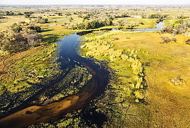 The Gomoti River with its adjoining freshwater marshland, aerial view, Okavango Delta, Botswana, Africa