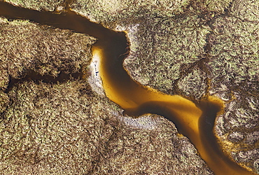 Freshwater marshes with sandy streams and channels, aerial view, Okavango Delta, Botswana, Africa