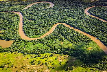 Rio Aquidauana flows through jungle, Pantanal, Mato Grosso do Sul, Brazil, South America