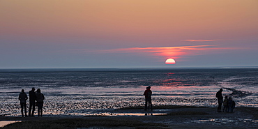 People looking at the sunset, mudflat, Lower Saxon Wadden Sea National Park, Cuxhaven, North Sea, Lower Saxony, Germany, Europe