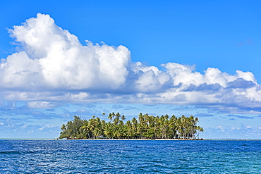 Small deserted island with palm trees, Raiatea, French Polynesia, South Pacific, Oceania