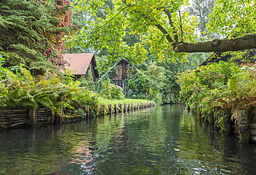 Tributary of the Spree river with small houses, Lübbenau, Spreewald, Brandenburg, Germany, Europe
