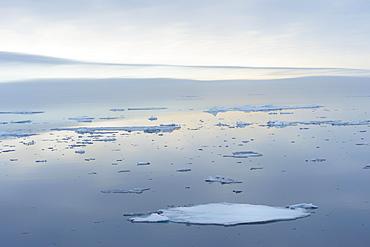 Arctic Ocean, 81°North, Svalbard Archipelago, Norway, Europe