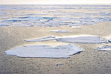 Arctic Ocean, 81° North and 26° East, Svalbard Archipelago, Norway, Europe