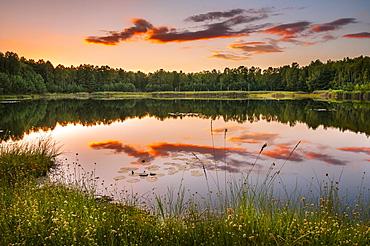 Lake with reflection in evening light, autumn, Schlaubetal Nature Park, wildlife reserve, Lieberoser moraine, Brandenburg, Germany, Europe