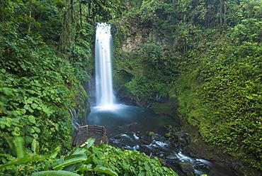 La Paz Waterfalls, La Paz Waterfall Gardens, Central Valley, Costa Rica, Central America
