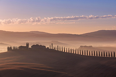 Tuscan landscape with road lined with cypress trees and farmstead at sunrise, dawn, San Quirico d'Orcia, Val d'Orcia, Tuscany, Italy, Europe