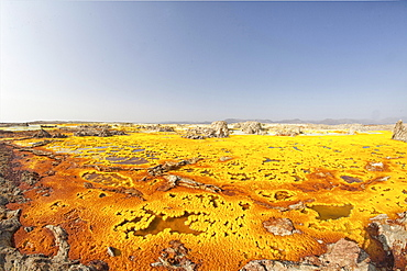 Sulphur sediments in the thermal area of Dallol, Danakil-Senke, Ethiopia, Africa
