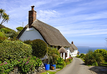 Traditional thatched houses, Landewednack, Lizard, Lizard Peninsula, Cornwall, England, United Kingdom, Europe