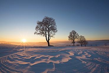 Winter landscape at sunset, Konstanz district, Baden-Württemberg, Germany, Europe