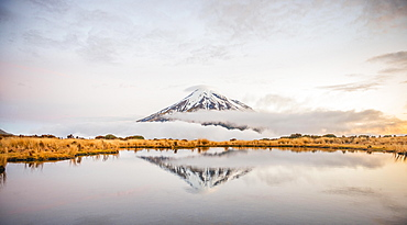 Reflection in Pouakai Tarn, stratovolcano Mount Taranaki or Mount Egmont at dusk, Egmont National Park, Taranaki, North Island, New Zealand, Oceania