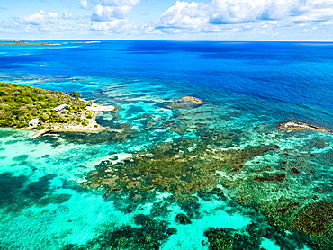 Coral reef off Great Bird Island, Antigua, West Indies, Caribbean, Antigua and Barbuda, Central America