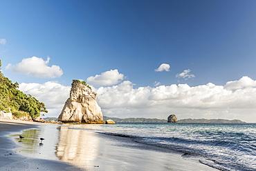 Beach at Cathedral Cove, Mercury Bay, Coromandel Peninsula, North Island, New Zealand, Oceania